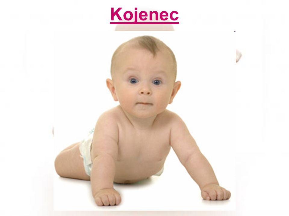 Kojenec