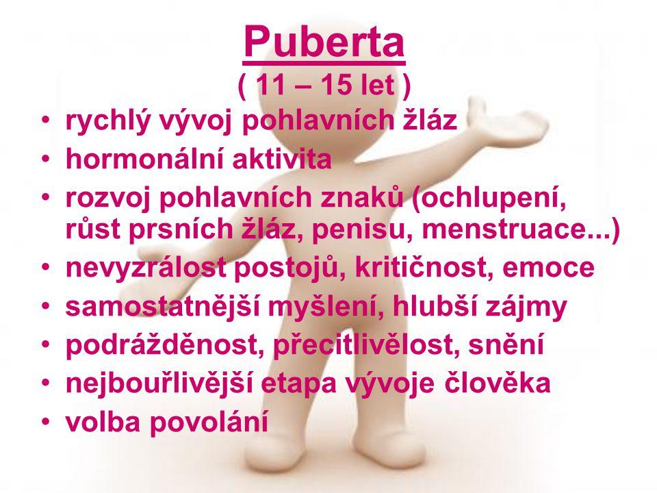 Puberta ( 11 – 15 let ) rychlý vývoj pohlavních žláz hormonální aktivita rozvoj pohlavních znaků (ochlupení, růst prsních žláz, penisu, menstruace...) nevyzrálost postojů, kritičnost, emoce samostatnější myšlení, hlubší zájmy podrážděnost, přecitlivělost, snění nejbouřlivější etapa vývoje člověka volba povolání