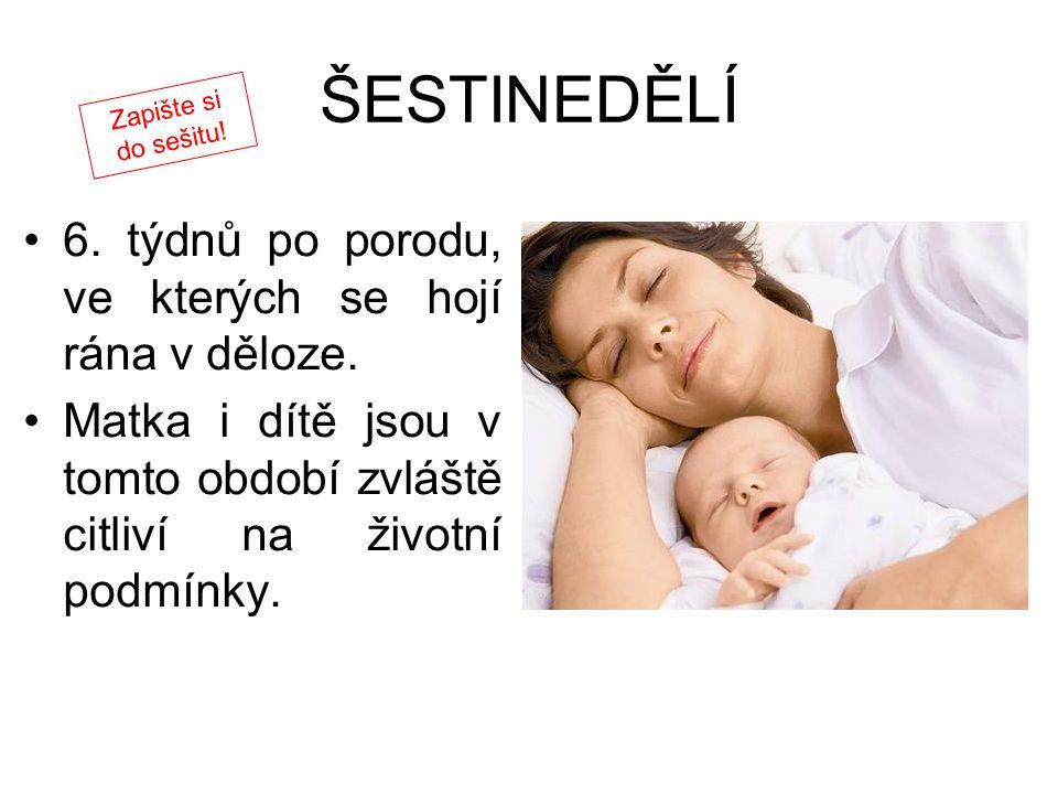 ŠESTINEDĚLÍ 6. týdnů po porodu, ve kterých se hojí rána v děloze. Matka i dítě jsou v tomto období zvláště citliví na životní podmínky. Zapište si do