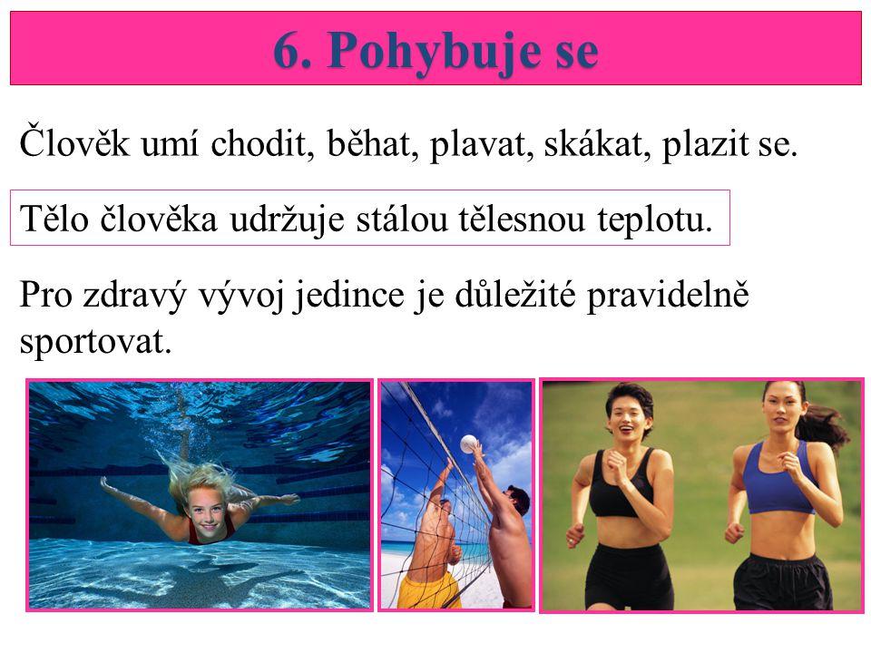 6.Pohybuje se Člověk umí chodit, běhat, plavat, skákat, plazit se.