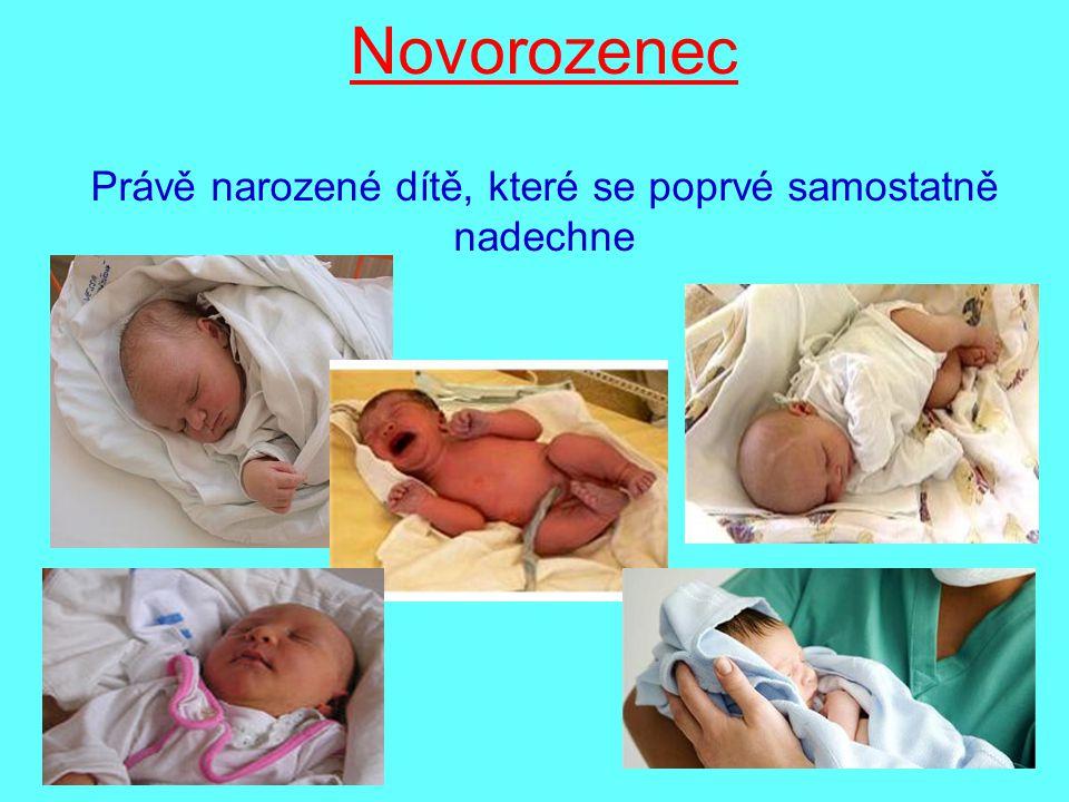 Novorozenec Právě narozené dítě, které se poprvé samostatně nadechne
