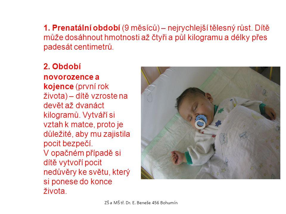 1. Prenatální období (9 měsíců) – nejrychlejší tělesný růst. Dítě může dosáhnout hmotnosti až čtyři a půl kilogramu a délky přes padesát centimetrů. 2
