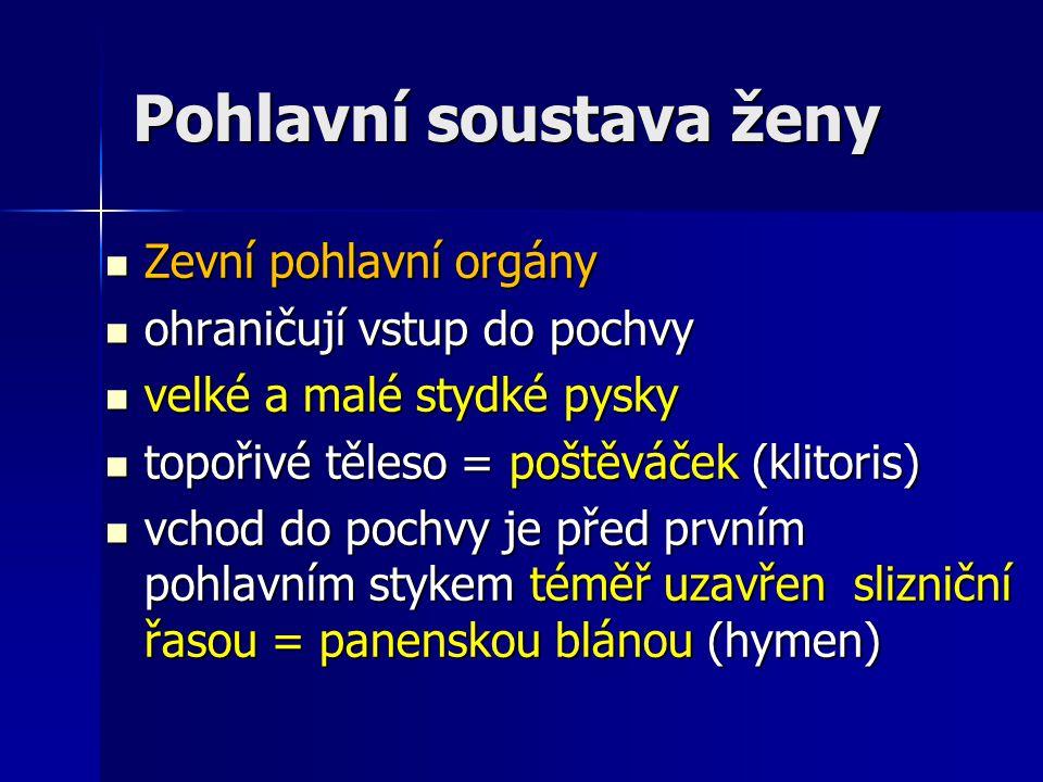 Pohlavní soustava ženy Zevní pohlavní orgány Zevní pohlavní orgány ohraničují vstup do pochvy ohraničují vstup do pochvy velké a malé stydké pysky vel