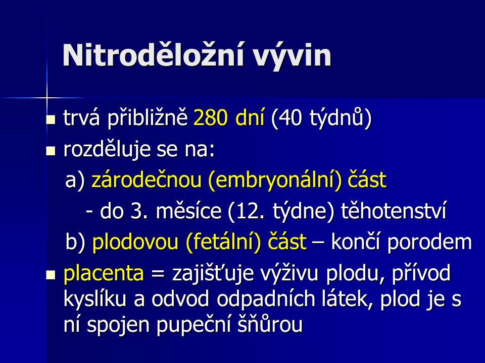 Nitroděložní vývin trvá přibližně 280 dní (40 týdnů) trvá přibližně 280 dní (40 týdnů) rozděluje se na: rozděluje se na: a) zárodečnou (embryonální) č
