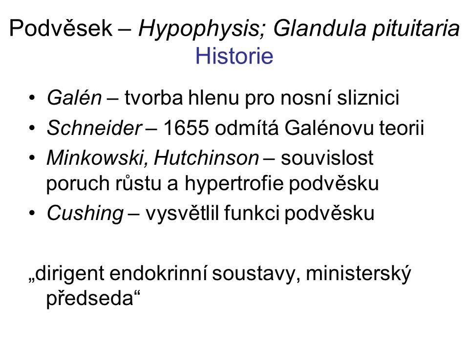 Podvěsek – Hypophysis; Glandula pituitaria Historie Galén – tvorba hlenu pro nosní sliznici Schneider – 1655 odmítá Galénovu teorii Minkowski, Hutchin