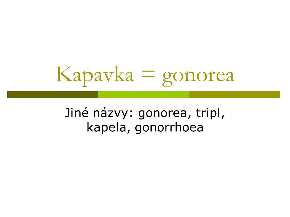 Kapavka = gonorea Jiné názvy: gonorea, tripl, kapela, gonorrhoea