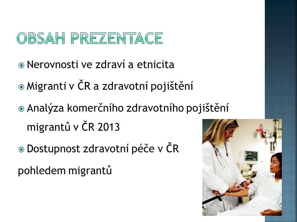  Nerovnosti ve zdraví a etnicita  Migranti v ČR a zdravotní pojištění  Analýza komerčního zdravotního pojištění migrantů v ČR 2013  Dostupnost zdr