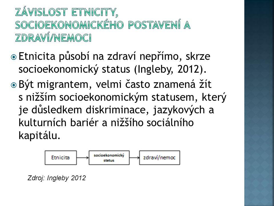  Etnicita působí na zdraví nepřímo, skrze socioekonomický status (Ingleby, 2012).  Být migrantem, velmi často znamená žít s nižším socioekonomickým