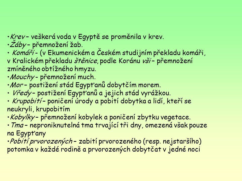 Mojžíš Narodil se v Egyptě židovským rodičům, rozkaz faraona zabít židovské novorozence, košík, řeka, nalezen a adoptován faraonovou dcerou, bůh mu rozkázal, aby vyvedl Židy z Egypta do zaslíbené země (Kannán)- exodus 10 morových ran, přechod přes Rudé moře, hora Sinaj- 10 přikázání a archa úmluvy, 40 let putování pustinou, dokud nevymřela generace, která se chtěla vrátit do Egypta, břeh Jordánu, Mojžíš nepřekročil, zemřel ve věku 120 let a do země zaslíbené se nedostal