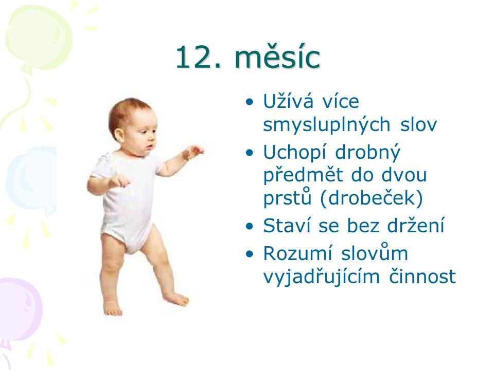 12. měsíc Užívá více smysluplných slov Uchopí drobný předmět do dvou prstů (drobeček) Staví se bez držení Rozumí slovům vyjadřujícím činnost