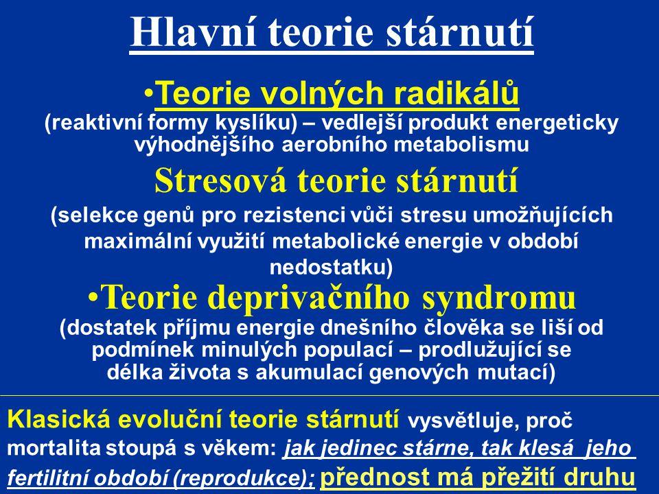 Hlavní teorie stárnutí Teorie volných radikálů (reaktivní formy kyslíku) – vedlejší produkt energeticky výhodnějšího aerobního metabolismu Stresová te