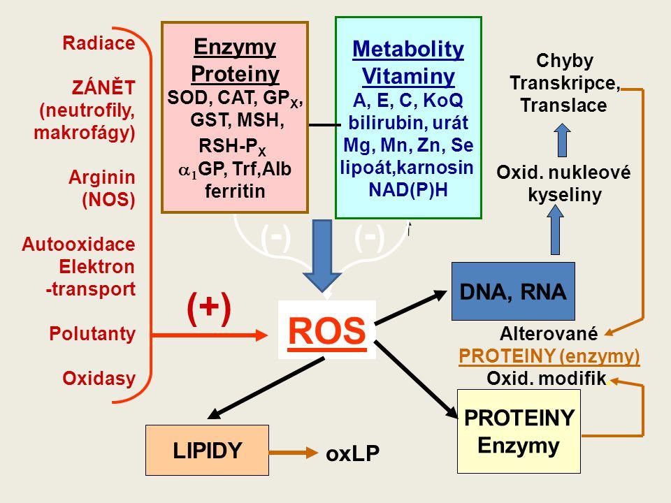 ROS Enzymy Proteiny SOD, CAT, GP X, GST, MSH, RSH-P X   GP, Trf,Alb ferritin Metabolity Vitaminy A, E, C, KoQ bilirubin, urát Mg, Mn, Zn, Se lipoát,