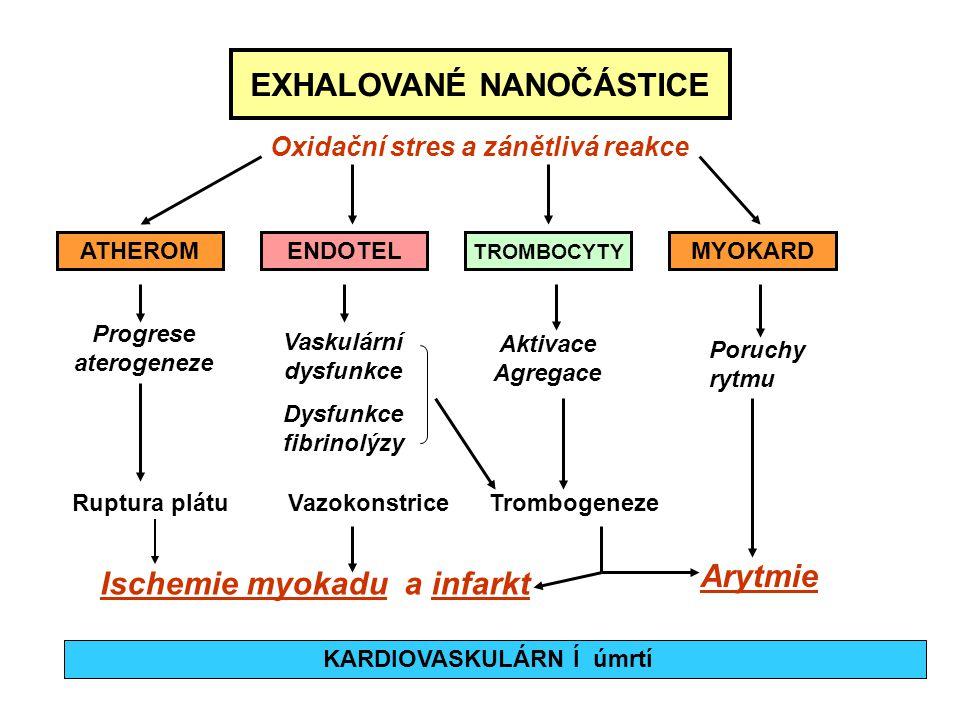 EXHALOVANÉ NANOČÁSTICE Oxidační stres a zánětlivá reakce ATHEROMENDOTEL TROMBOCYTY MYOKARD Progrese aterogeneze Vaskulární dysfunkce Dysfunkce fibrino