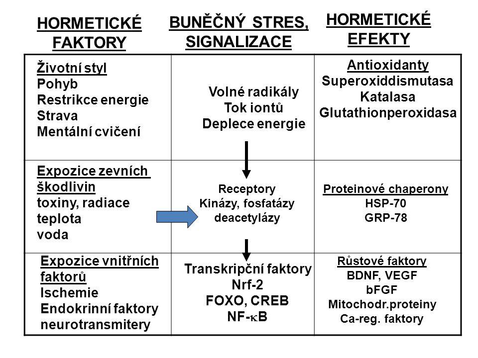 HORMETICKÉ FAKTORY BUNĚČNÝ STRES, SIGNALIZACE HORMETICKÉ EFEKTY Antioxidanty Superoxiddismutasa Katalasa Glutathionperoxidasa Životní styl Pohyb Restr