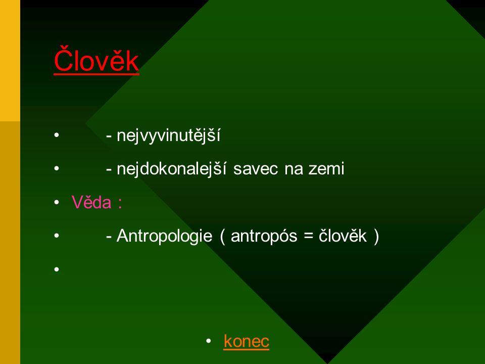 - nejvyvinutější - nejdokonalejší savec na zemi Věda : - Antropologie ( antropós = člověk ) konec