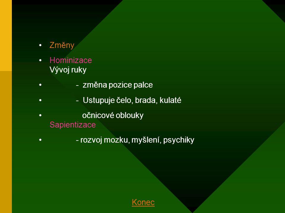chrup : - a) mléčný - b) trvalý řezáky = ukusují potravu ( 1 kus ) špičáky = trhají ( 1 kus ) zuby třenové = drtí a rozmělňují potravu ( 2 kusy ) stoličky = drtí a rozmělňují potravu ( 3 kusy ) kostra páteře : - obratle krční ( 7 ) - obratle hrudní ( 12 ) - obratle bederní ( 5 ) - obratle křížové ( 5 ) - obratle kostrční ( 4 – 5 ) = srostlé kostra hrudníku : - žebra 12 párů - pravá - nepravá - volná - kost hrudní