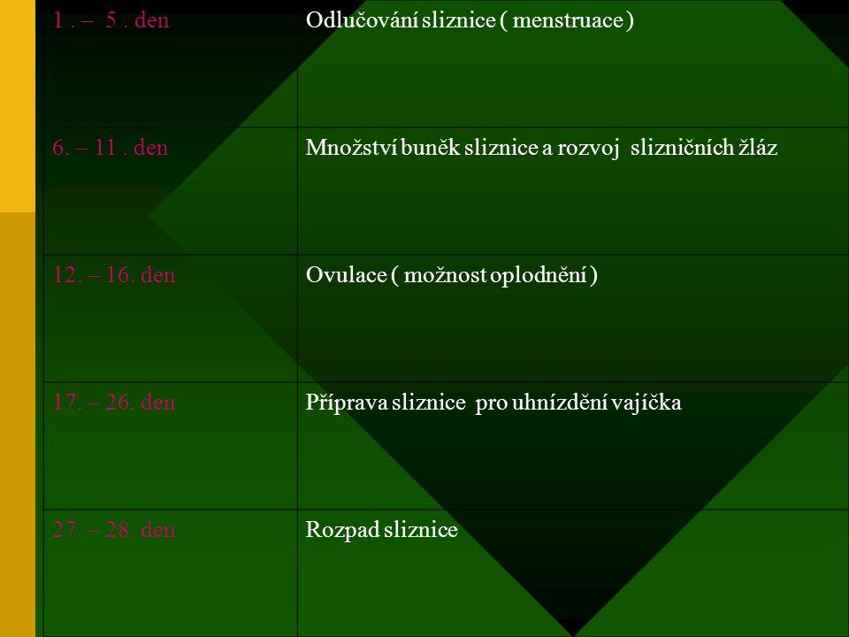 1.– 5. denOdlučování sliznice ( menstruace ) 6. – 11.