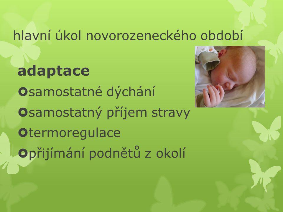 hlavní úkol novorozeneckého období adaptace  samostatné dýchání  samostatný příjem stravy  termoregulace  přijímání podnětů z okolí