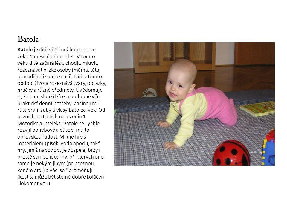 Batole Batole je dítě,větší než kojenec, ve věku 4.měsíců až do 3 let. V tomto věku dítě začíná lézt, chodit, mluvit, rozeznávat blízké osoby (máma, t