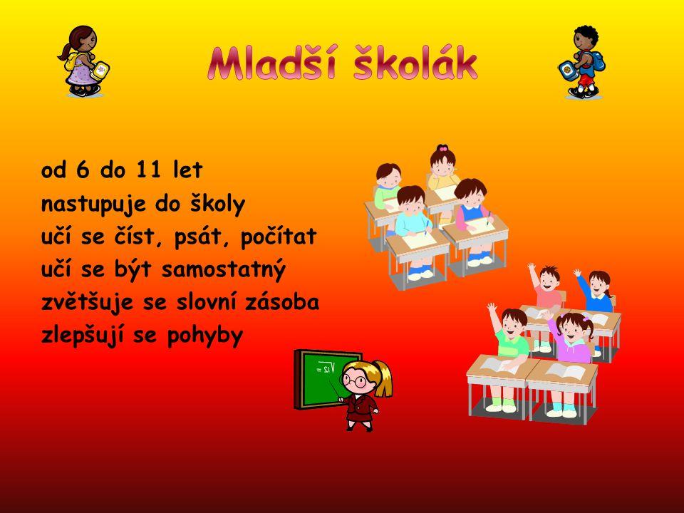 od 6 do 11 let nastupuje do školy učí se číst, psát, počítat učí se být samostatný zvětšuje se slovní zásoba zlepšují se pohyby