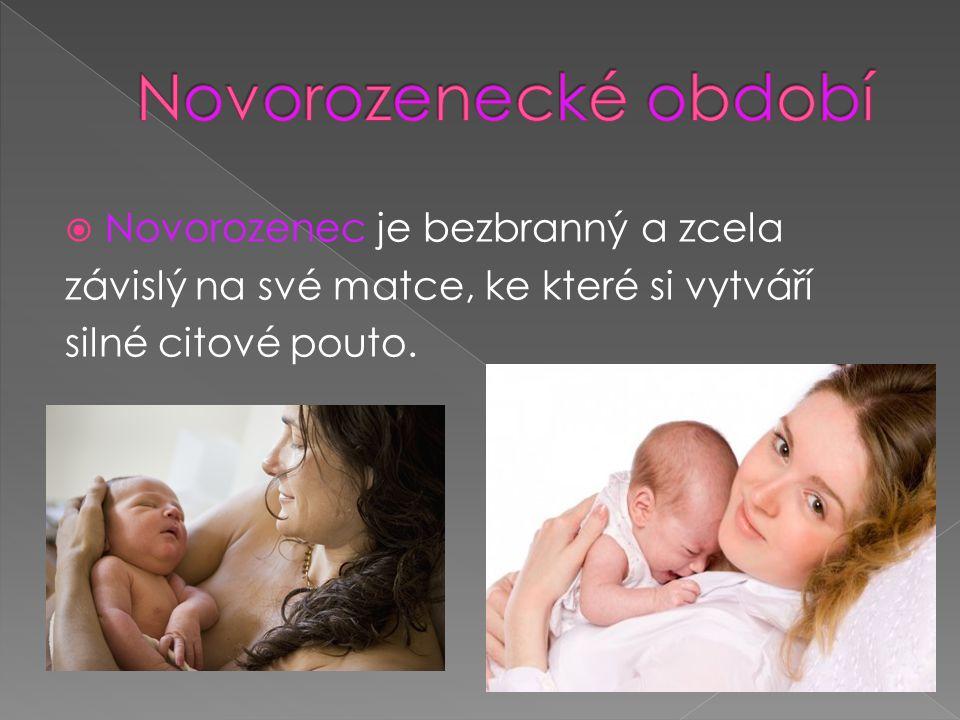  Novorozenec je bezbranný a zcela závislý na své matce, ke které si vytváří silné citové pouto.