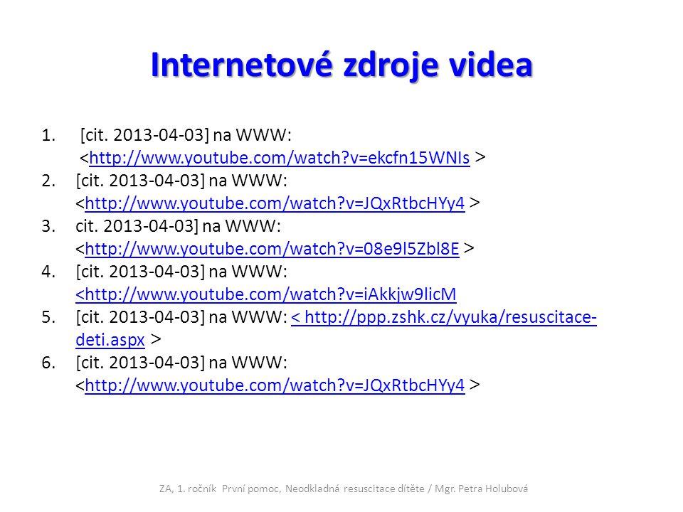 Internetové zdroje videa 1.[cit.