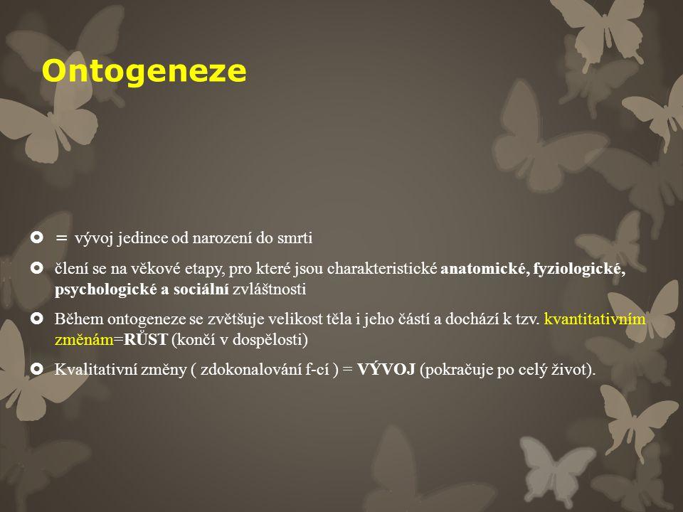 Ontogeneze  = vývoj jedince od narození do smrti  člení se na věkové etapy, pro které jsou charakteristické anatomické, fyziologické, psychologické