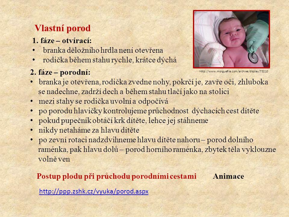 Vlastní porod 2. fáze – porodní: branka je otevřena, rodička zvedne nohy, pokrčí je, zavře oči, zhluboka se nadechne, zadrží dech a během stahu tlačí
