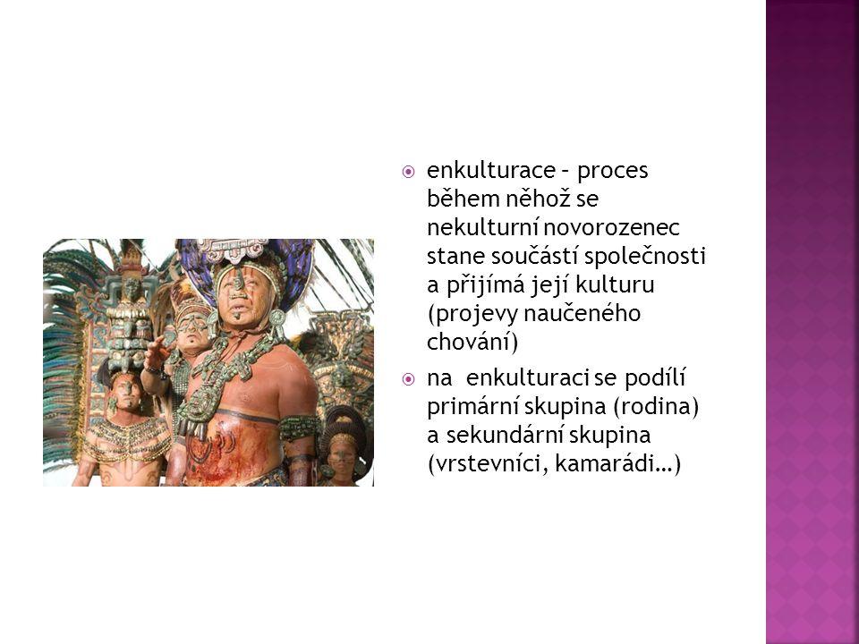  enkulturace – proces během něhož se nekulturní novorozenec stane součástí společnosti a přijímá její kulturu (projevy naučeného chování)  na enkult