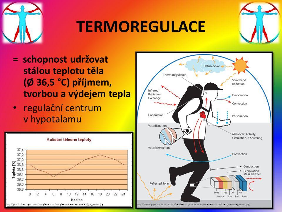 TERMOREGULACE = schopnost udržovat stálou teplotu těla (Ø 36,5 °C) příjmem, tvorbou a výdejem tepla regulační centrum v hypotalamu http://4.bp.blogspo