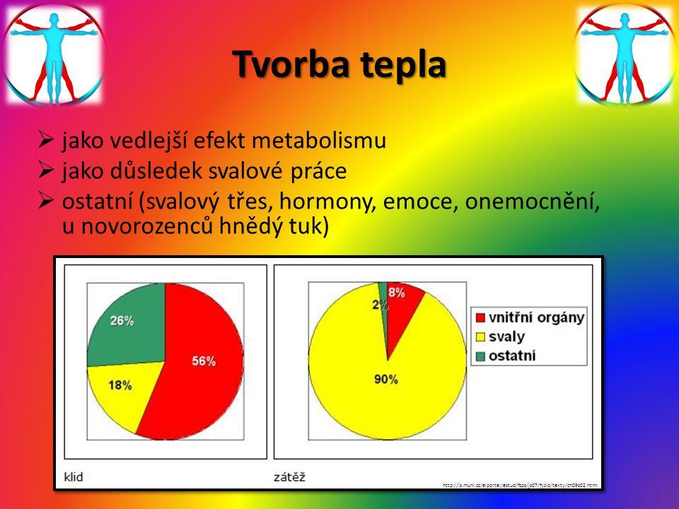 Tvorba tepla  jako vedlejší efekt metabolismu  jako důsledek svalové práce  ostatní (svalový třes, hormony, emoce, onemocnění, u novorozenců hnědý