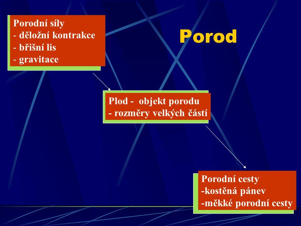 Porod Plod - objekt porodu - rozměry velkých částí Porodní síly - děložní kontrakce - břišní lis - gravitace Porodní cesty -kostěná pánev -měkké porod