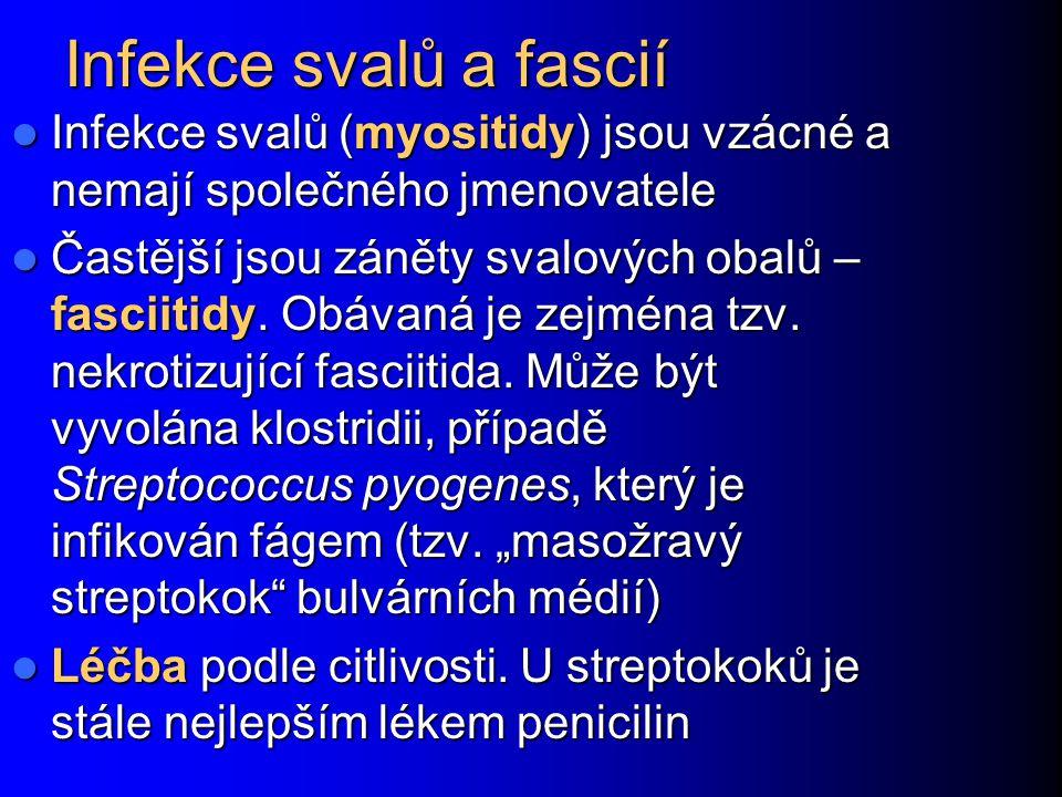 Infekce svalů a fascií Infekce svalů (myositidy) jsou vzácné a nemají společného jmenovatele Infekce svalů (myositidy) jsou vzácné a nemají společného