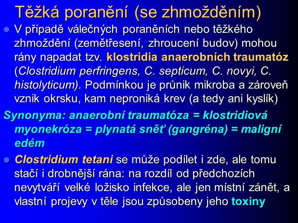 Těžká poranění (se zhmožděním) V případě válečných poraněních nebo těžkého zhmoždění (zemětřesení, zhroucení budov) mohou rány napadat tzv. klostridia