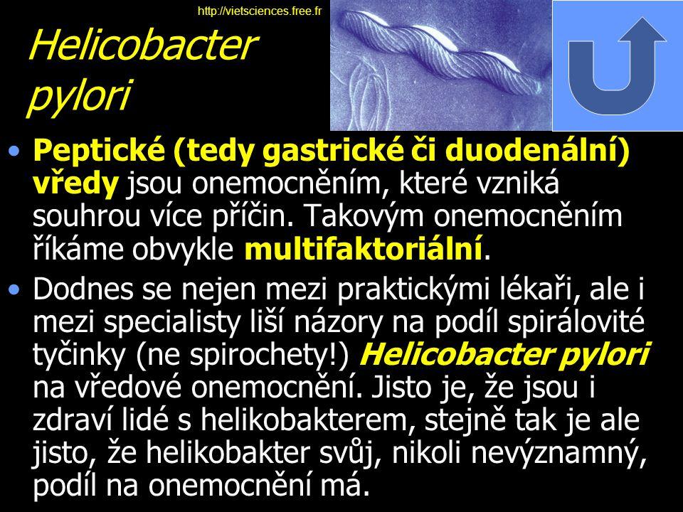 Helicobacter pylori Peptické (tedy gastrické či duodenální) vředy jsou onemocněním, které vzniká souhrou více příčin. Takovým onemocněním říkáme obvyk