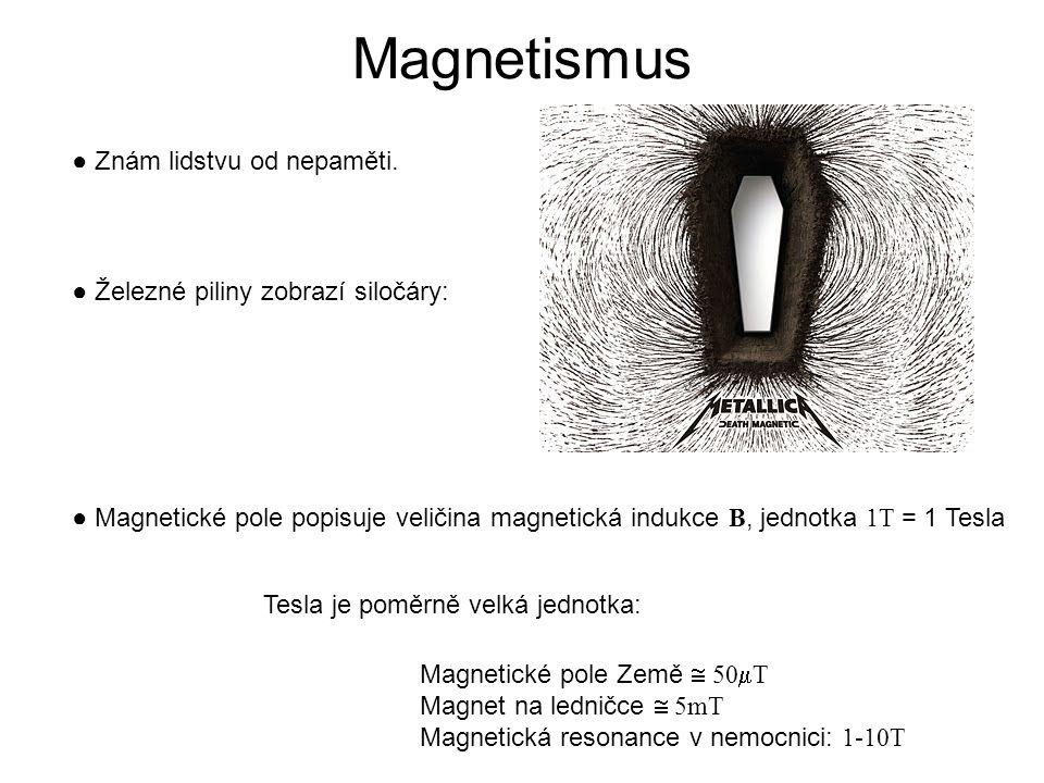 Jednotka magnetického pole