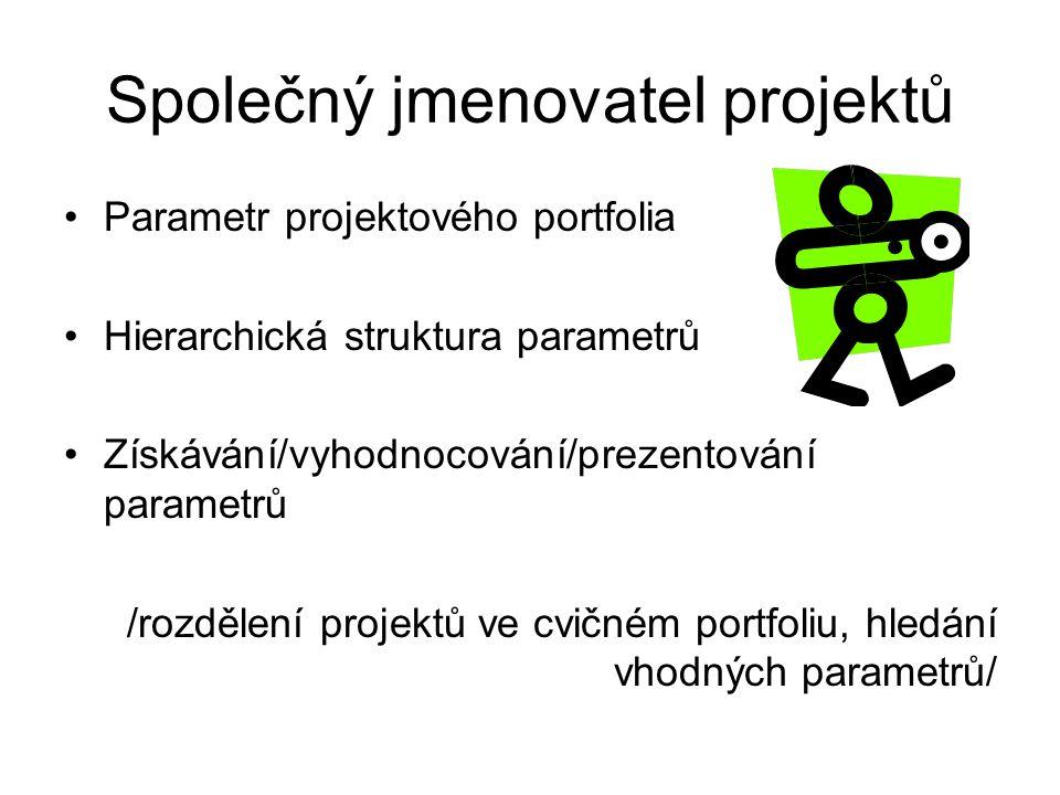 Společný jmenovatel projektů Parametr projektového portfolia Hierarchická struktura parametrů Získávání/vyhodnocování/prezentování parametrů /rozdělen