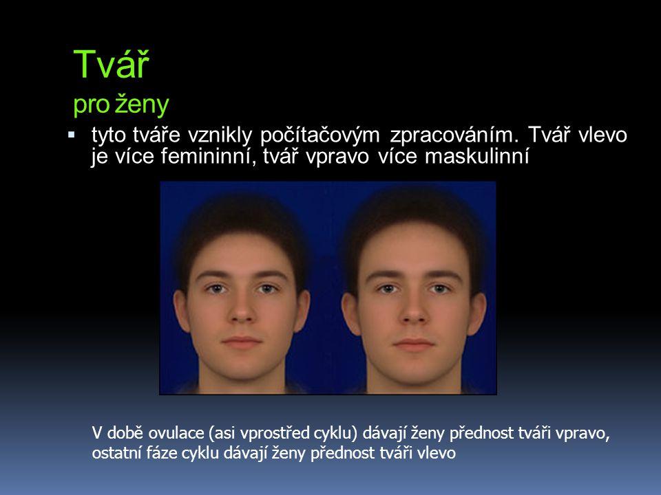 Tvář pro ženy  tyto tváře vznikly počítačovým zpracováním. Tvář vlevo je více femininní, tvář vpravo více maskulinní V době ovulace (asi vprostřed cy