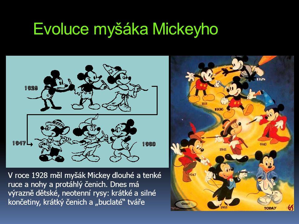 Evoluce myšáka Mickeyho V roce 1928 měl myšák Mickey dlouhé a tenké ruce a nohy a protáhlý čenich. Dnes má výrazně dětské, neotenní rysy: krátké a sil