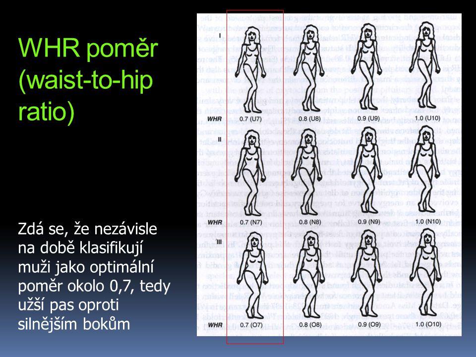 WHR poměr (waist-to-hip ratio) Zdá se, že nezávisle na době klasifikují muži jako optimální poměr okolo 0,7, tedy užší pas oproti silnějším bokům