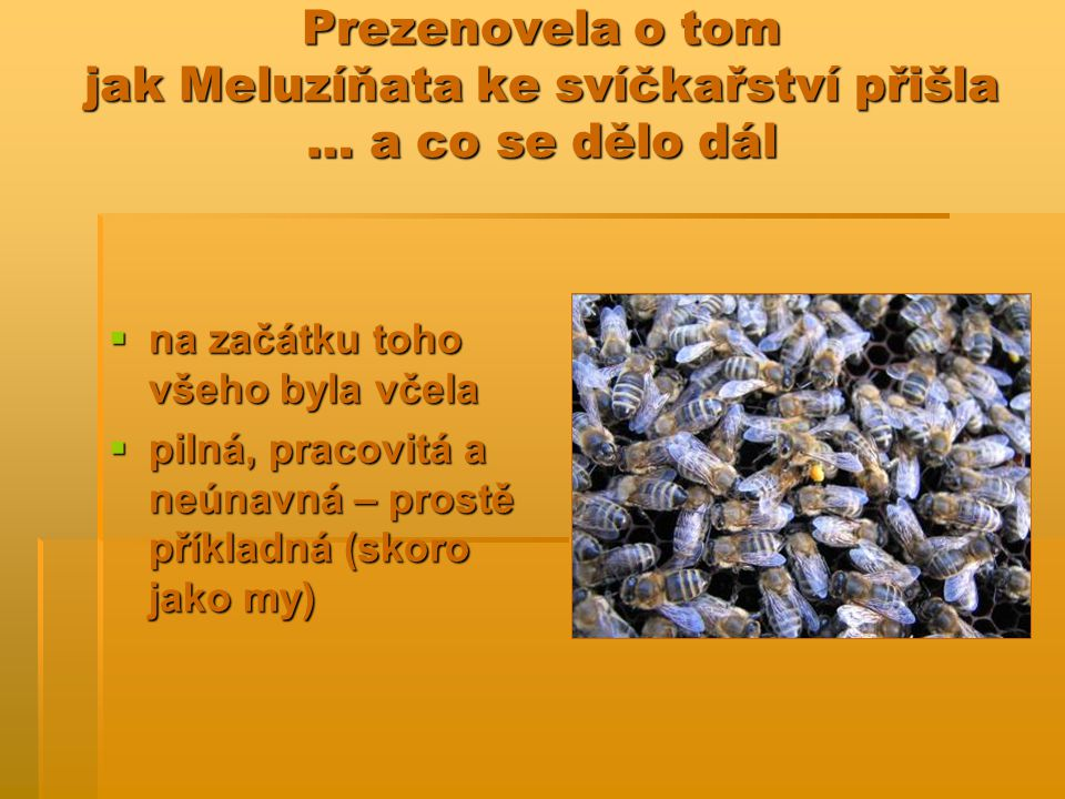 Prezenovela o tom jak Meluzíňata ke svíčkařství přišla … a co se dělo dál  na začátku toho všeho byla včela  pilná, pracovitá a neúnavná – prostě příkladná (skoro jako my)