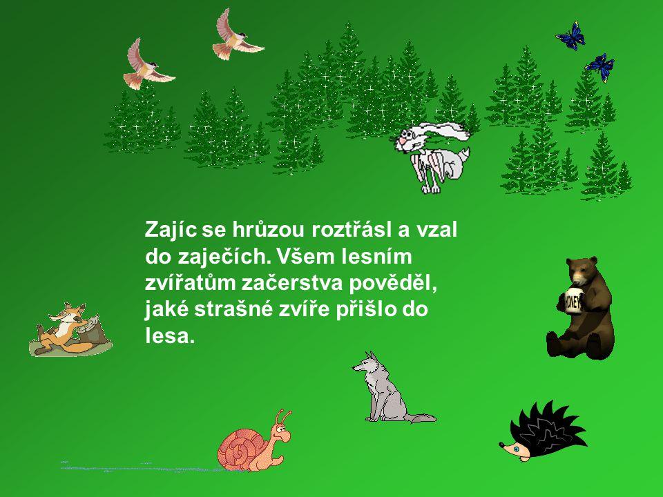Zajíc se hrůzou roztřásl a vzal do zaječích. Všem lesním zvířatům začerstva pověděl, jaké strašné zvíře přišlo do lesa.