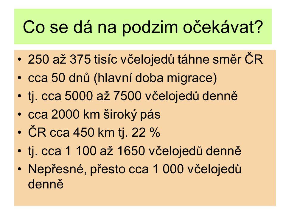Co se dá na podzim očekávat? 250 až 375 tisíc včelojedů táhne směr ČR cca 50 dnů (hlavní doba migrace) tj. cca 5000 až 7500 včelojedů denně cca 2000 k