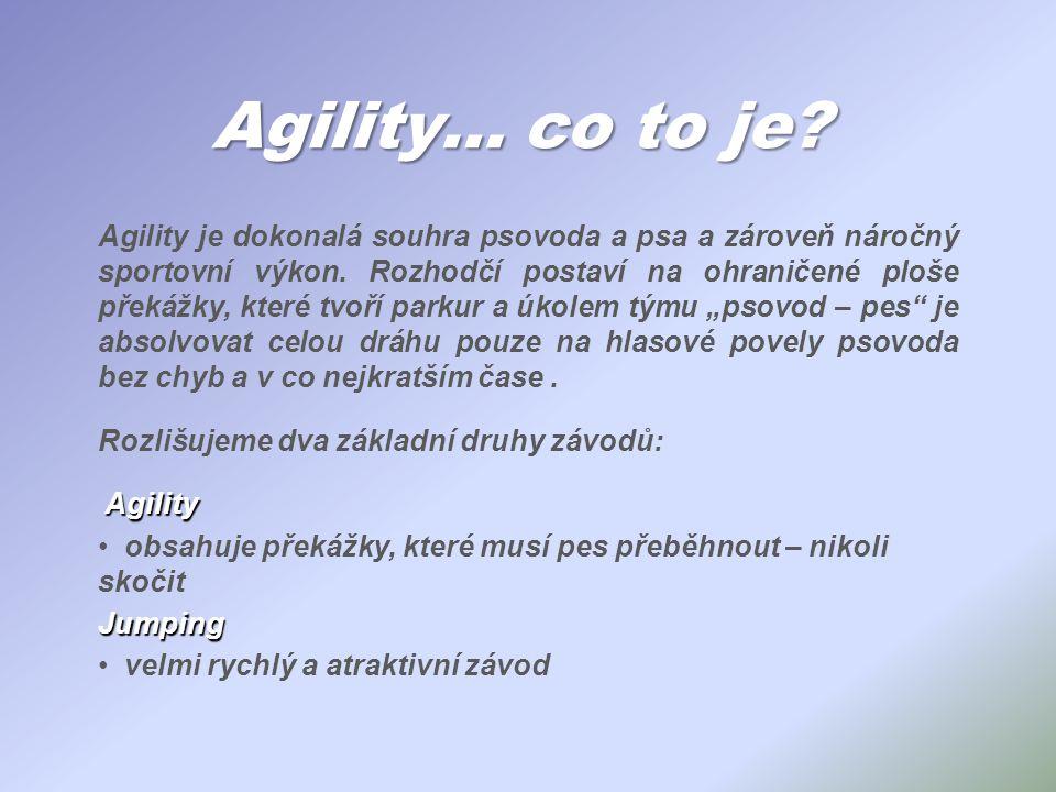 Agility… co to je? Agility je dokonalá souhra psovoda a psa a zároveň náročný sportovní výkon. Rozhodčí postaví na ohraničené ploše překážky, které tv