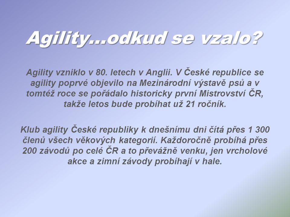 Agility…odkud se vzalo? Agility vzniklo v 80. letech v Anglii. V České republice se agility poprvé objevilo na Mezinárodní výstavě psů a v tomtéž roce