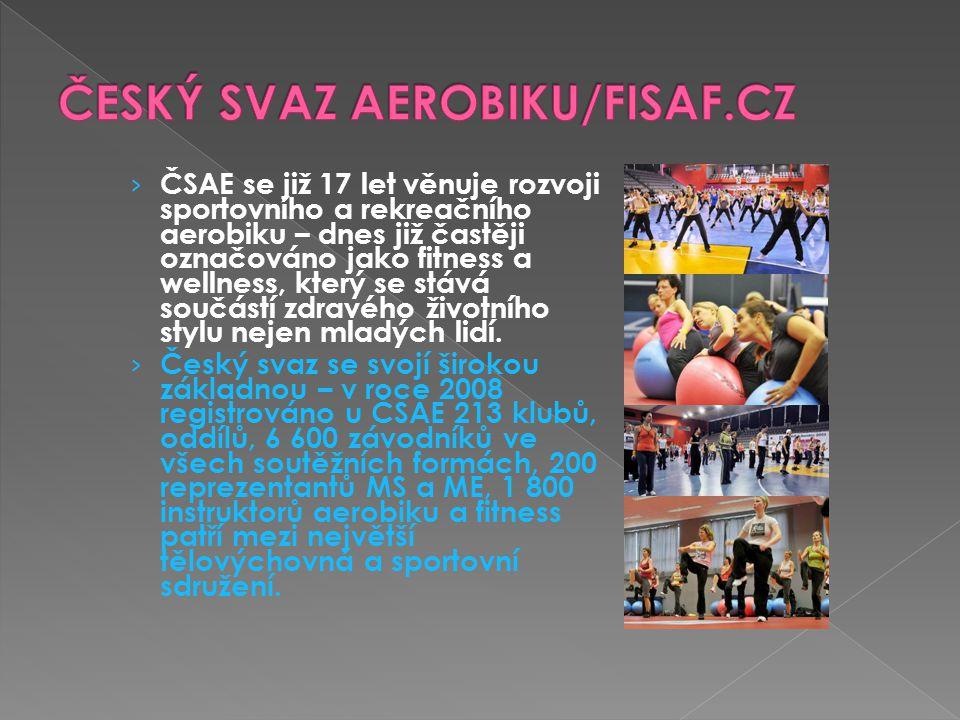 › ČSAE se již 17 let věnuje rozvoji sportovního a rekreačního aerobiku – dnes již častěji označováno jako fitness a wellness, který se stává součástí zdravého životního stylu nejen mladých lidí.