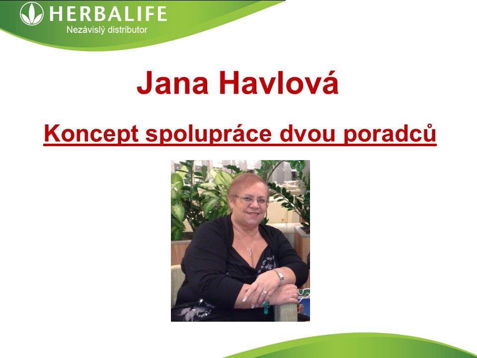 Jana Havlová Koncept spolupráce dvou poradců