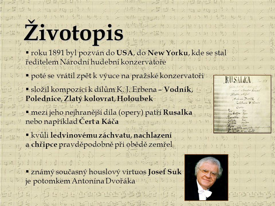 Životopis  roku 1891 byl pozván do USA, do New Yorku, kde se stal ředitelem Národní hudební konzervatoře  poté se vrátil zpět k výuce na pražské kon
