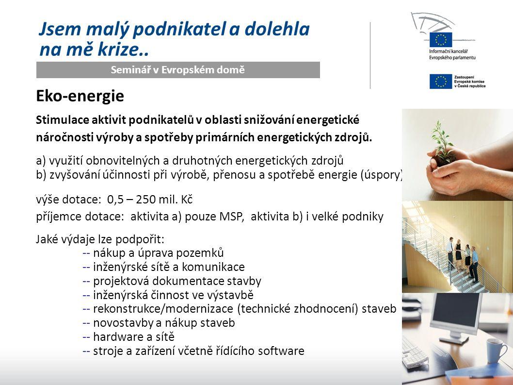 Seminář v Evropském domě Jsem malý podnikatel a dolehla na mě krize.. Eko-energie Stimulace aktivit podnikatelů v oblasti snižování energetické náročn