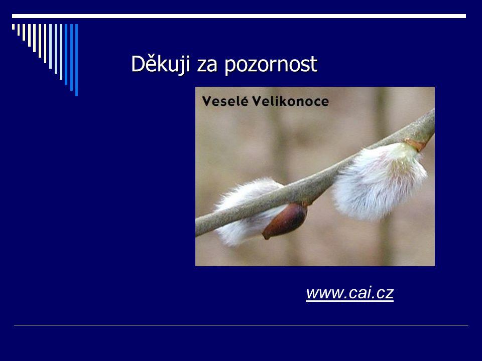 www.cai.cz Děkuji za pozornost